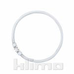 Lumilux T5 FC 22 Watt 830